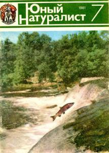 Юный натуралист 1981 №07