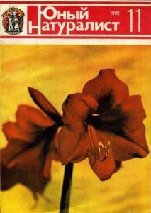 Юный натуралист 1981 №11