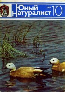 Юный натуралист 1984 №10