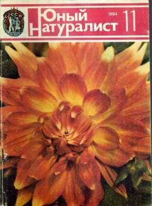 Юный натуралист 1984 №11