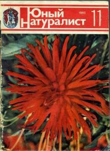 Юный натуралист 1985 №11