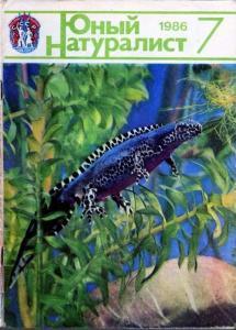 Юный натуралист 1986 №07