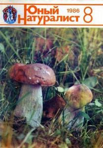 Юный натуралист 1986 №08