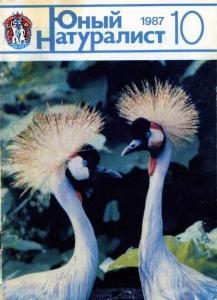 Юный натуралист 1987 №10