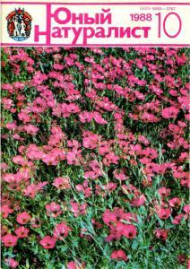 Юный натуралист 1988 №10