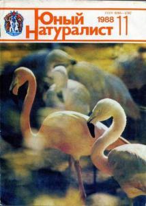 Юный натуралист 1988 №11