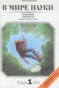 В мире науки 1985 №01