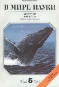 В мире науки 1985 №05