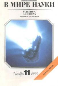 В мире науки 1988 №11