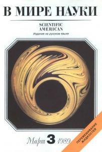 В мире науки 1989 №03